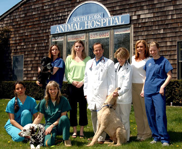 About South Fork Animal Hospital