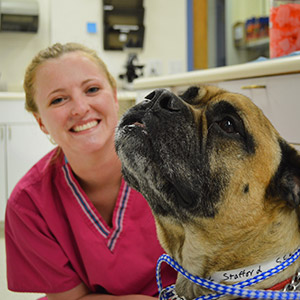 South Fork Animal Hospital Staff